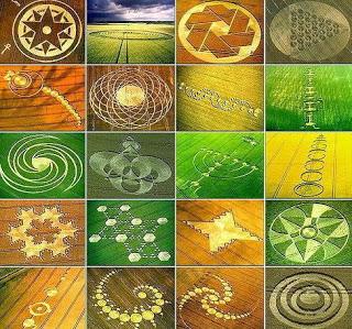 Aneka Bentuk Crop Circle